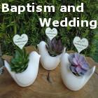 Weddings and Baptism