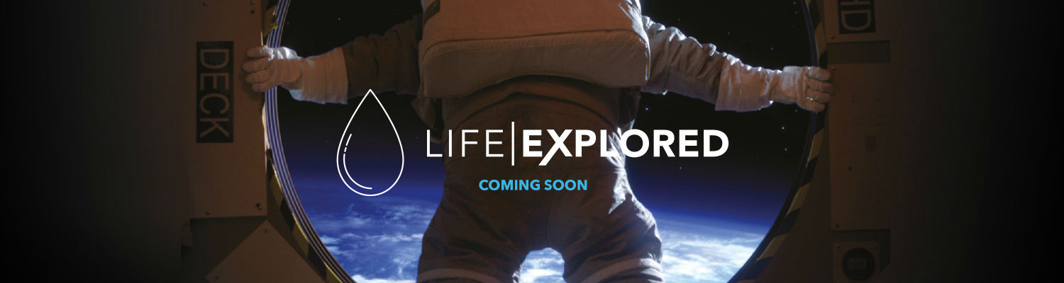 life exp pic