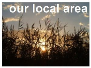 our local area