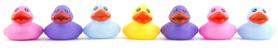 Quackers logo