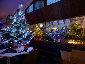 Christmas Tree festival 6