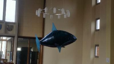 shark swimming around church at Mens breakfast