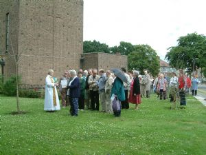 Vicar blessing new trees