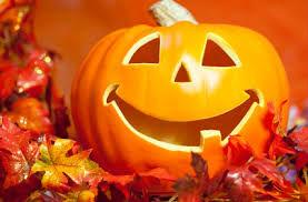 internet search pumpkin