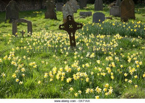 picture of a church  graveyard