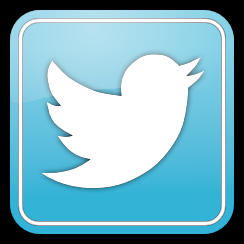 twitter logo in box