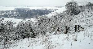 downs snow