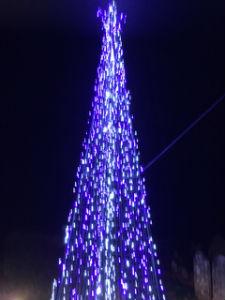 Christmas tree at doorway