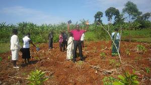 Khabutola Mission Sept 2013