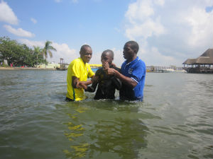 Baptism 2016