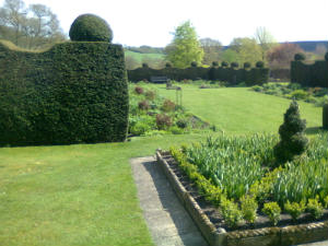 Topiary around the lawns