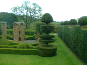 More topiary at Felley Priory