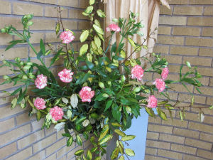 Flowers Our Lady