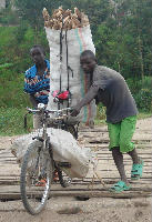 Transporting cassava