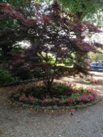 whalley garden 3