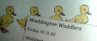 Waddlers