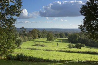 From Leith Hill Place