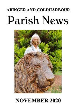 PN Nov20 cover
