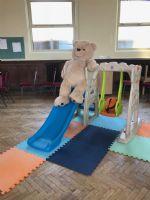 Wesley the Bear on a slide