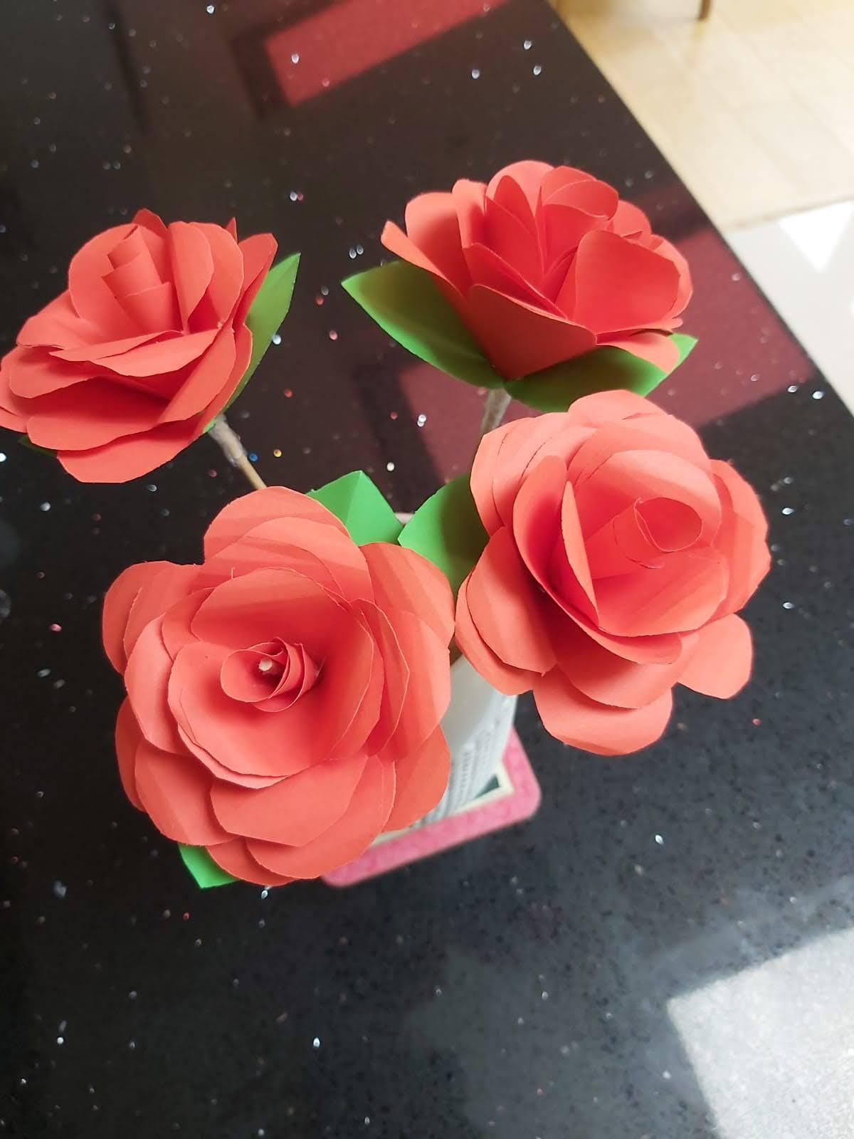 Newton Roses