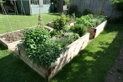 Herb and Sensory Beds