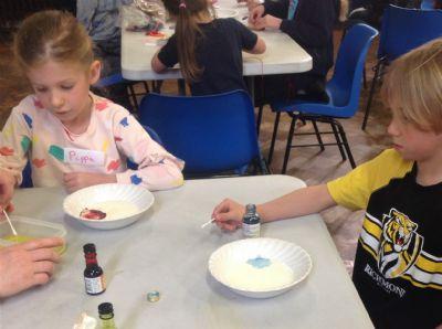 Food Colour Experiment