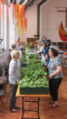A Busy Plant Stall