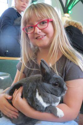 Cuddly Bunny Rabbit