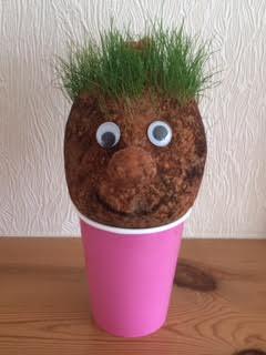 Grass head 1