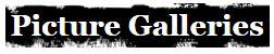 Picture Galleries Logo