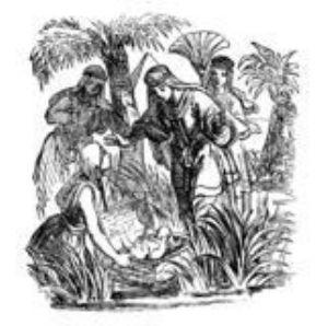 Moses in bullrushes