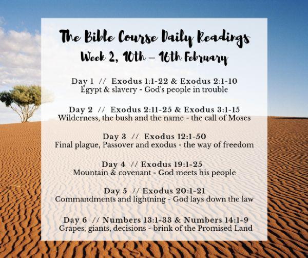 biblecoursewk2