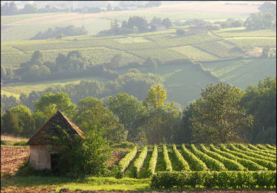 French Farm Scene