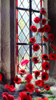 Poppies in church