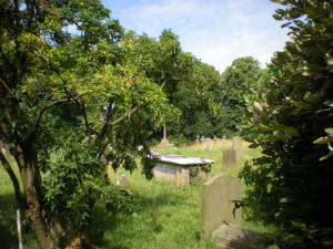 A view of the churchyard with trees either side.