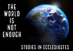 World in not enough
