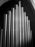 Organ BW
