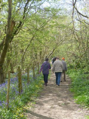 Away Day Walk