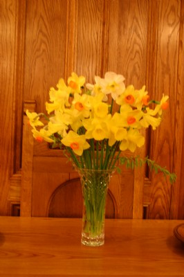 Daffodils at Easter Service