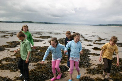 Childrens Day exploring look out for crabs