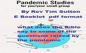 Pandemic studies e booklet