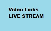 Live-stream videos of online services
