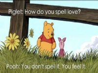 Picture of piglet and poo