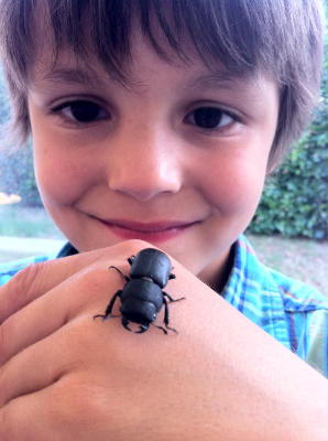 Josh and a female Stag Beetle