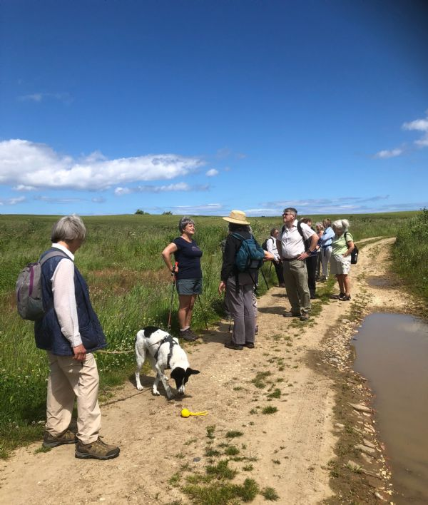Pilgrims at Hoddy Cow Lane