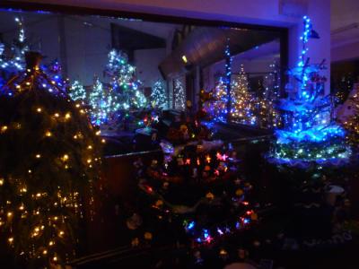 Christmas Tree Festival 1