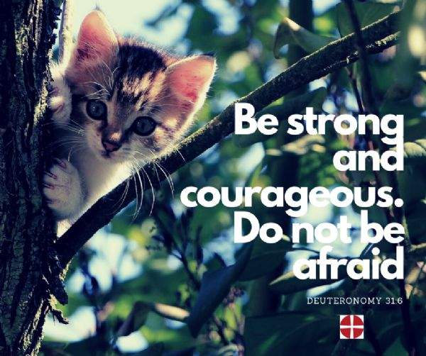 Image - Be strong