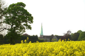 Barham church seen across the fields