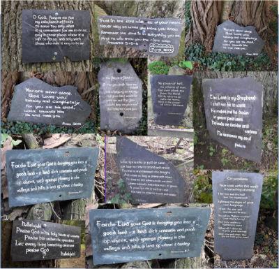 Slate Verses