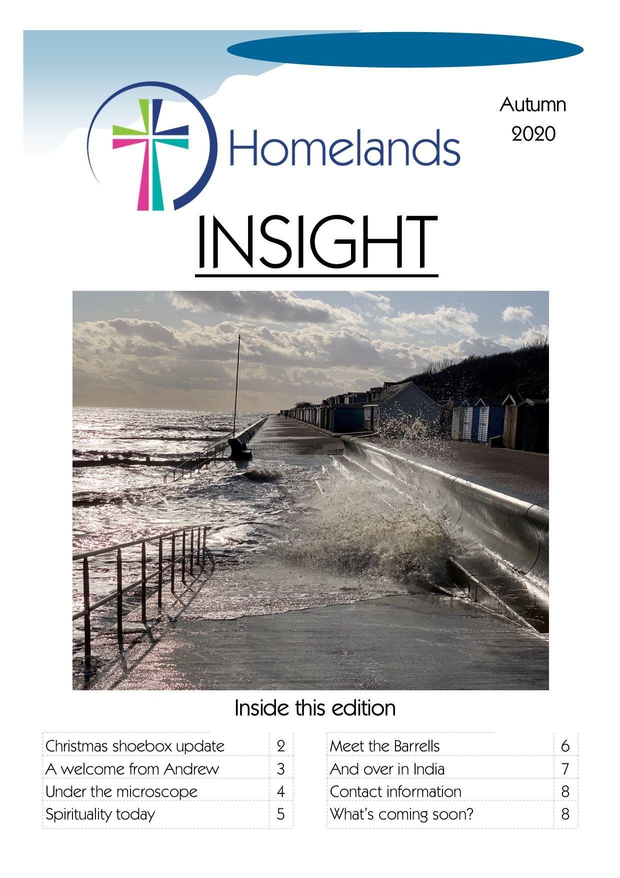 Insight Autumn 20 cover